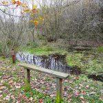 Kingmoor Reserve